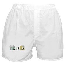 """WTD: """"No Comment"""" Boxer Shorts"""