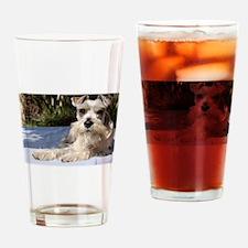 Handsome Mini Schnauzer Drinking Glass
