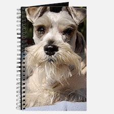 Handsome Mini Schnauzer Journal