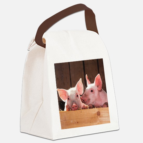 Two Adorable Little Pigs Canvas Lunch Bag