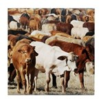 A Herd of Cattle Tile Coaster