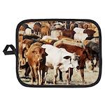 A Herd of Cattle Potholder