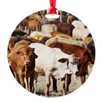 A Herd of Cattle Round Ornament