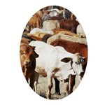 A Herd of Cattle Oval Ornament