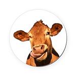 Selfie Cow (Transparent) Round Coaster