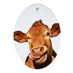Selfie Cow (Transparent) Oval Ornament