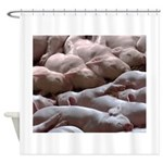 Baby Pigs Shower Curtain