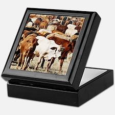 A Herd of Cattle Keepsake Box