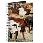 A Herd of Cattle Journal