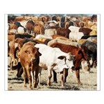 A Herd of Cattle Small Poster
