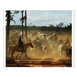 Herding Cattle Small Poster