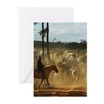 Herding Cattle Greeting Cards (Pk of 20)