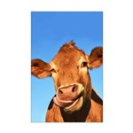 Selfie Cow Mini Poster Print
