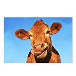 Selfie Cow Postcards (Package of 8)