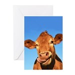 Selfie Cow Greeting Cards (Pk of 10)