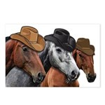 Cowboy Horses Postcards (Package of 8)