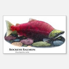 Sockeye Salmon Decal
