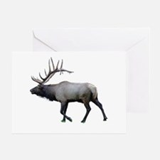 Willow Wapiti elk Greeting Card