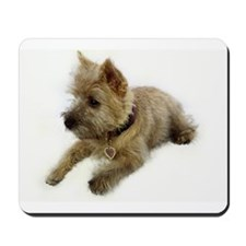 Cairn Terrier Puppy Mousepad