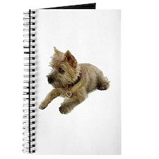 Cairn Terrier Puppy Journal