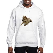 Cairn Terrier Puppy Hoodie Sweatshirt