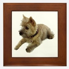Cairn Terrier Puppy Framed Tile