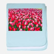 Red and Pink Tulips of Keukenhof Liss baby blanket