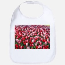 Red and Pink Tulips of Keukenhof Lisse Ho Baby Bib