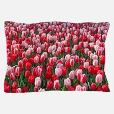 Red and Pink Tulips of Keukenhof Lisse Pillow Case