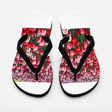 Red and Pink Tulips of Keukenhof Lisse Flip Flops
