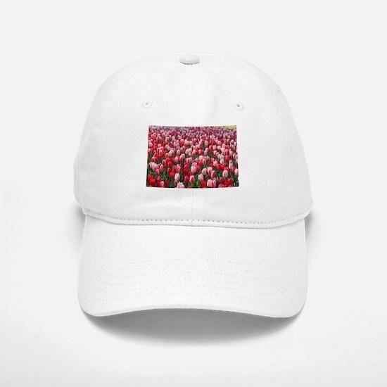Red and Pink Tulips of Keukenhof Lisse Holland Baseball Baseball Cap