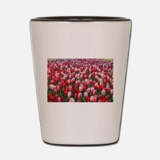 Red and Pink Tulips of Keukenhof Lisse Shot Glass