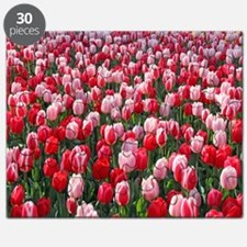 Red and Pink Tulips of Keukenhof Lisse Holl Puzzle