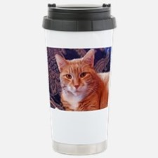 Juba the kitty cat Stainless Steel Travel Mug