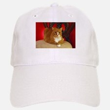Vanya the cat posing for the camera Baseball Baseball Cap