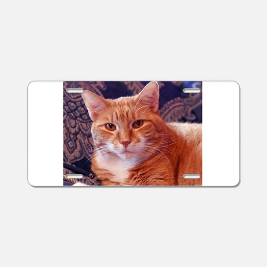 Juba the kitty cat Aluminum License Plate