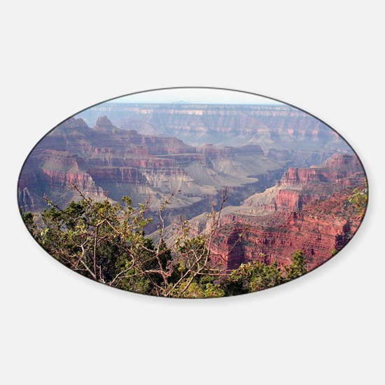 Grand Canyon North Rim, Arizona, USA 7 Decal