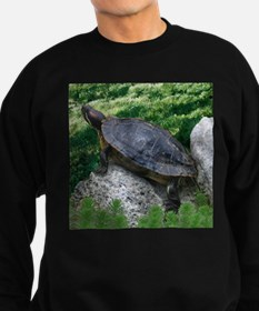 Turtle and Rock Sweatshirt