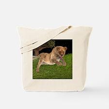 Female Lion Hunting Tote Bag