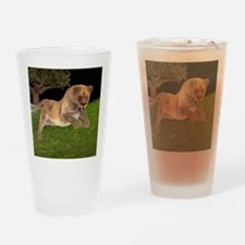 Female Lion Hunting Drinking Glass