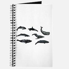 OCEANS Journal