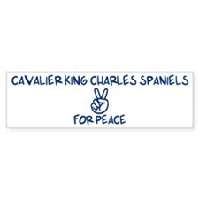 Cavalier King Charles Spaniel Bumper Car Sticker