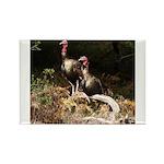 Two Turkeys on a Log Rectangle Magnet