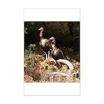 Two Turkeys on a Log Mini Poster Print