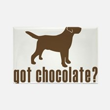 got chocolate lab? Magnets