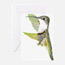 Ruby-Throated Hummingbird Greeting Cards (Package