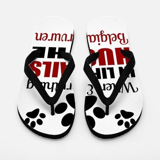 Hug The Belgian Tervuren Flip Flops