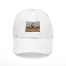 Pheasant Baseball Cap