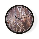 Chesapeake bay retriever Basic Clocks