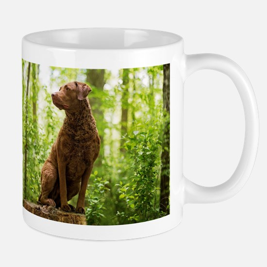 Chesapeake Bay Retriever Mugs